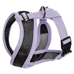 Gooby - Active X Head-in Harness, Choke Free Small Dog Harne