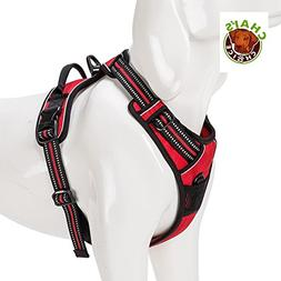 Chai's Choice Best Outdoor Adventure Harness