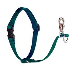 """LupinePet Basics 1"""" Green 26-38"""" No Pull Harness for Medium-"""