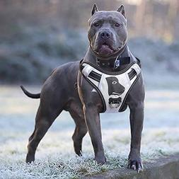 Babyltrl Big Dog Harness No-Pull Anti-Tear Adjustable Pet Ha