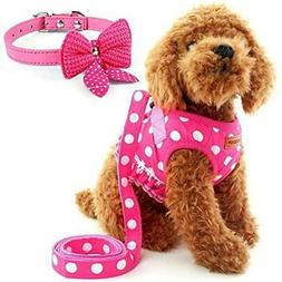 Cute Vest Harnesses Small Dog Harness, Ladies Polka Dots Set