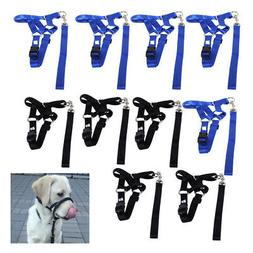Dog Halter Pet Head Collar Gentle Leader Training Straps No