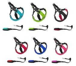 escape free sport harness or matching leash