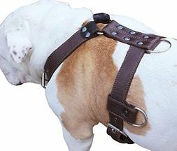 "Genuine Leather Dog Harness X-Large 33""-40"" Chest, 1.3"" Wide"