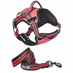 Starrider Helios Dog Pet Harness and Leash Combo