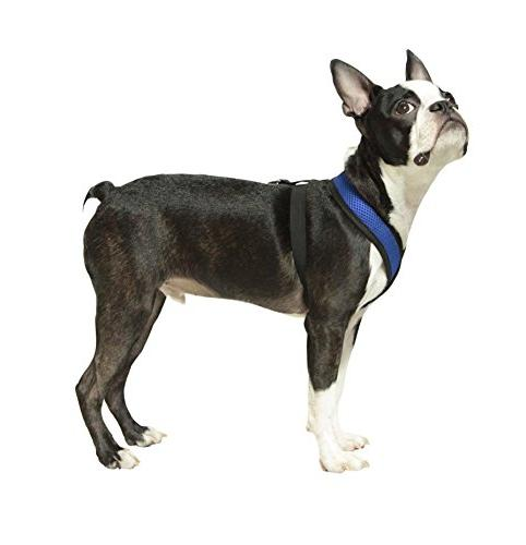 Gooby 04110-BLU-M Harness Synthetic