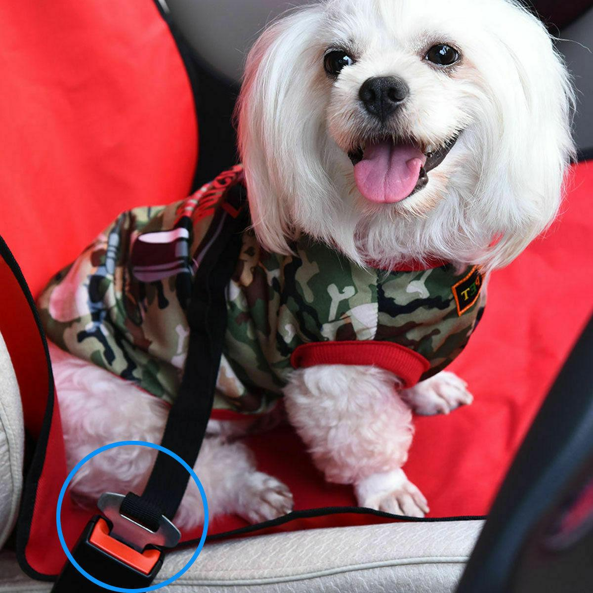 Car Seat Belt Harness Lead