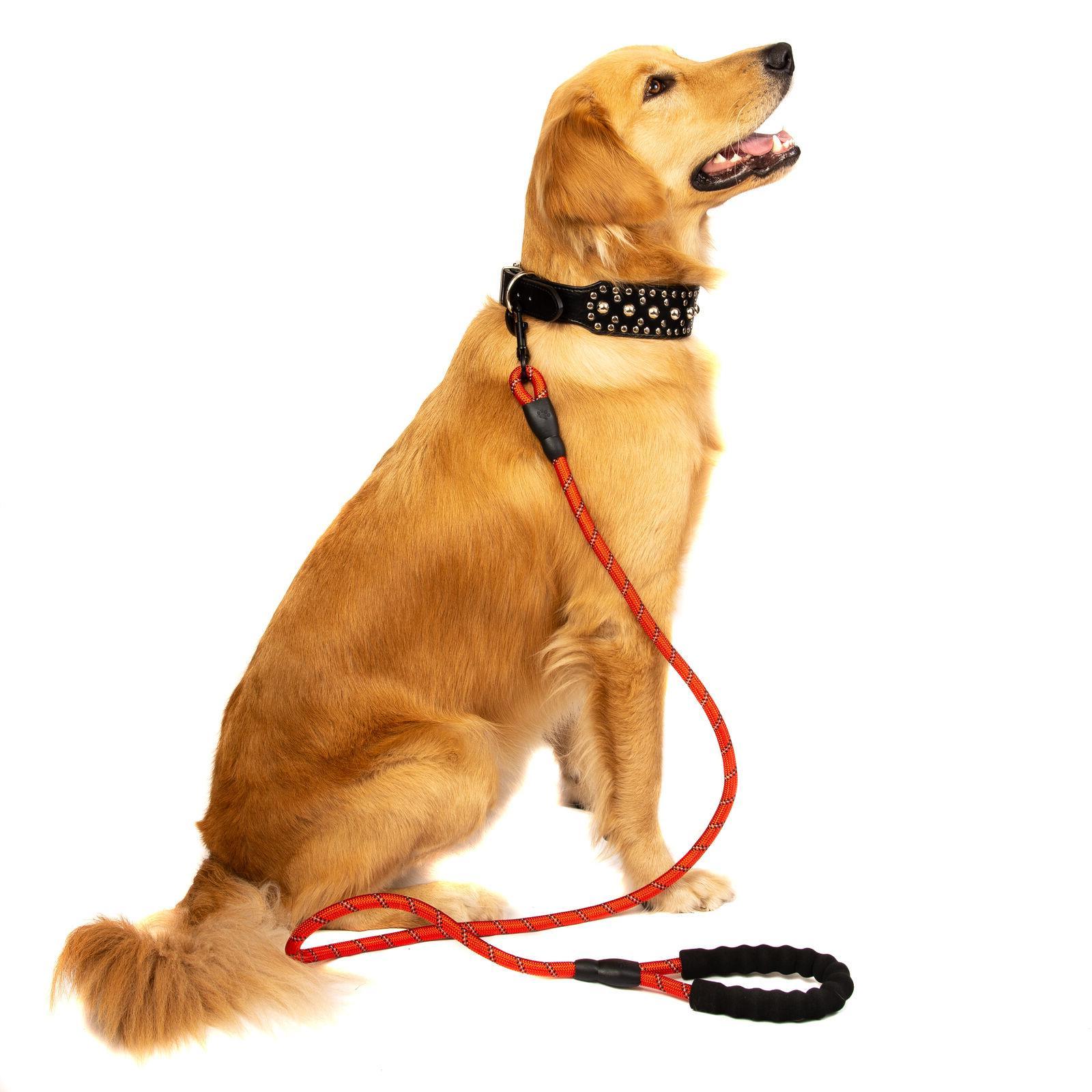 Large Heavy Duty Dog Lead with Training Walking