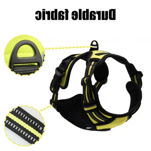 Adjustable Harness Reflective Walking
