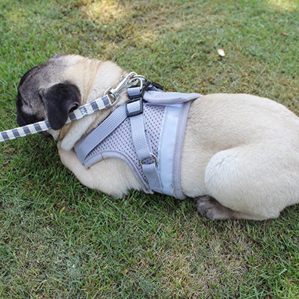 Small Dog mesh harness soft strap XXS-L