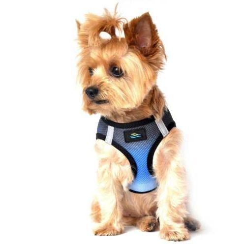 american river choke free dog harness ombre
