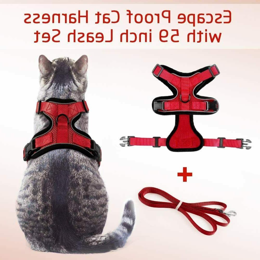 Rabbitgoo Harness Walking Adjustable 59 In Leash Red
