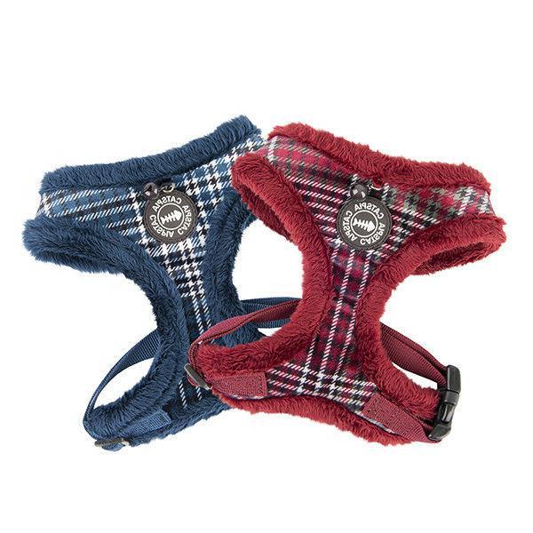 catspia neve harness casd ha9462 2 colors