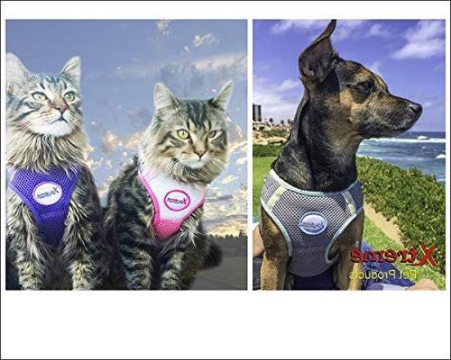 Xtreme Pet Comfort Harness