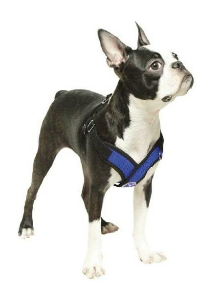 Gooby Comfort X In Dog Harness - Small Breed Free - M XL