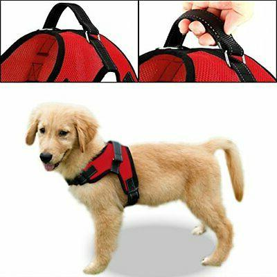 Copatchy No Adjustable Harness Handle