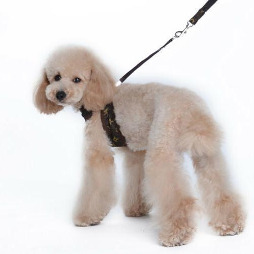 Cowboy Pet Dog Vest Leather Set