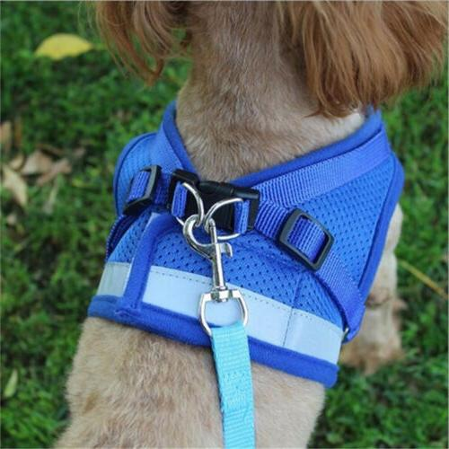 Dog Cat Pet Puppy Set Walk Strap