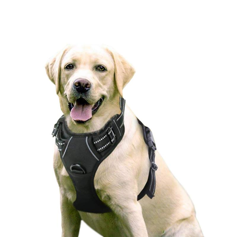 dog harness no pull pet adjustable outdoor