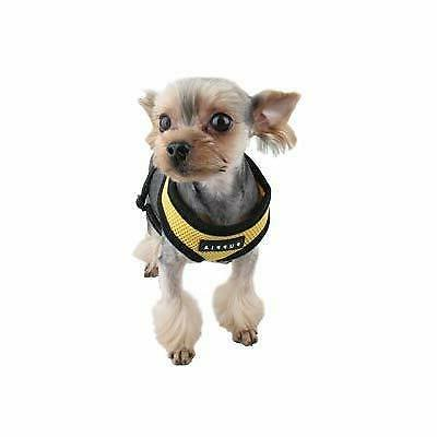 Puppia Dog Puppy Soft Brand Pick Size/Color