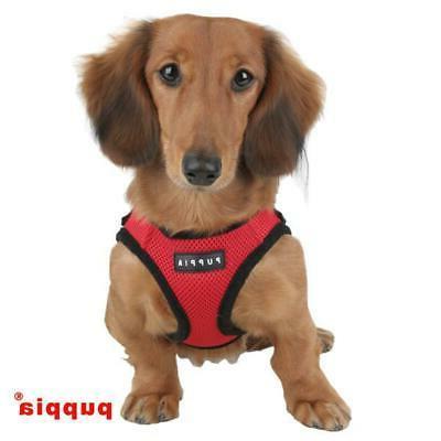 dog puppy harness soft mesh brand new