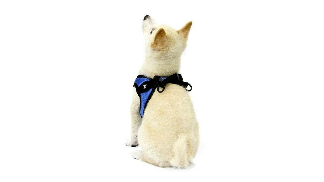 Gooby Easy Breed Dog Harness S