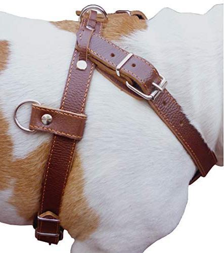 genuine brown leather pulling walking