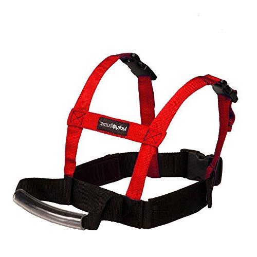 Dog Is Good Car Harnesses  Versatile Padded Harnesses for Do
