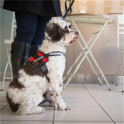 Harness Heavy Duty large Vest Dog Patch