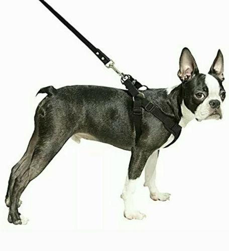 NEW Step-In X Dog Harness, Brand New