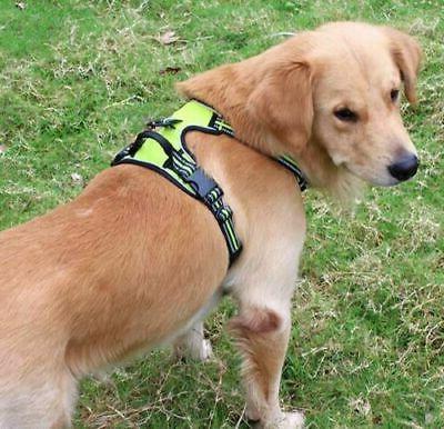 No-Pull Pet Vest Walk Collar Control
