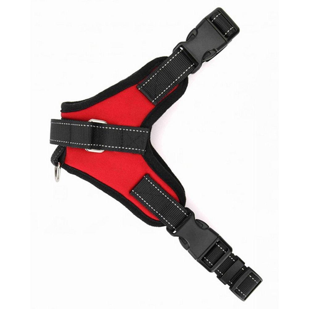 Dog Collar Set Adjustable Small/Medium/Large/XL