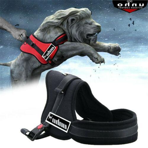 No Adjustable Padded Dog Quality S/Medium/ XL