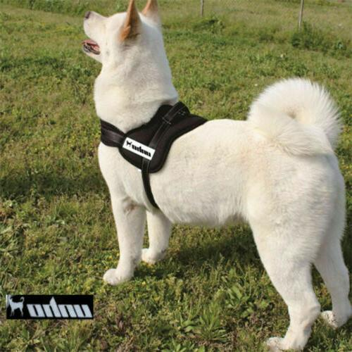 No Pull Padded Dog Pet Quality Nylon XL