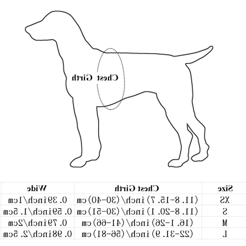 Nylon Pet No <font><b>Adjustable</b></font> Dog Leash Vest Classic Running Leash Strap Belt Small and Dogs