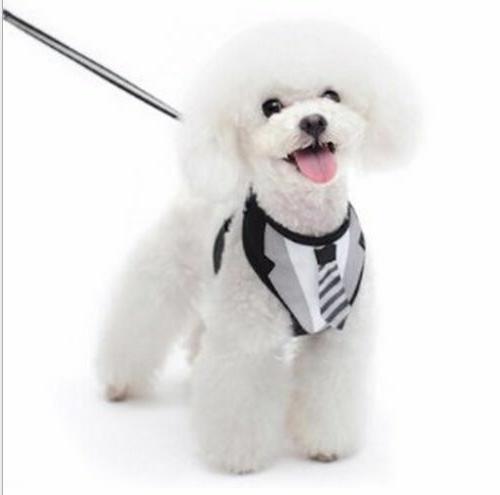 Pet Clothes Suit Leash Tux Cat Harness Strap Vest Tie