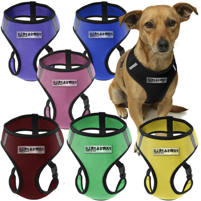 Pet Harness Dog & Mesh Walk