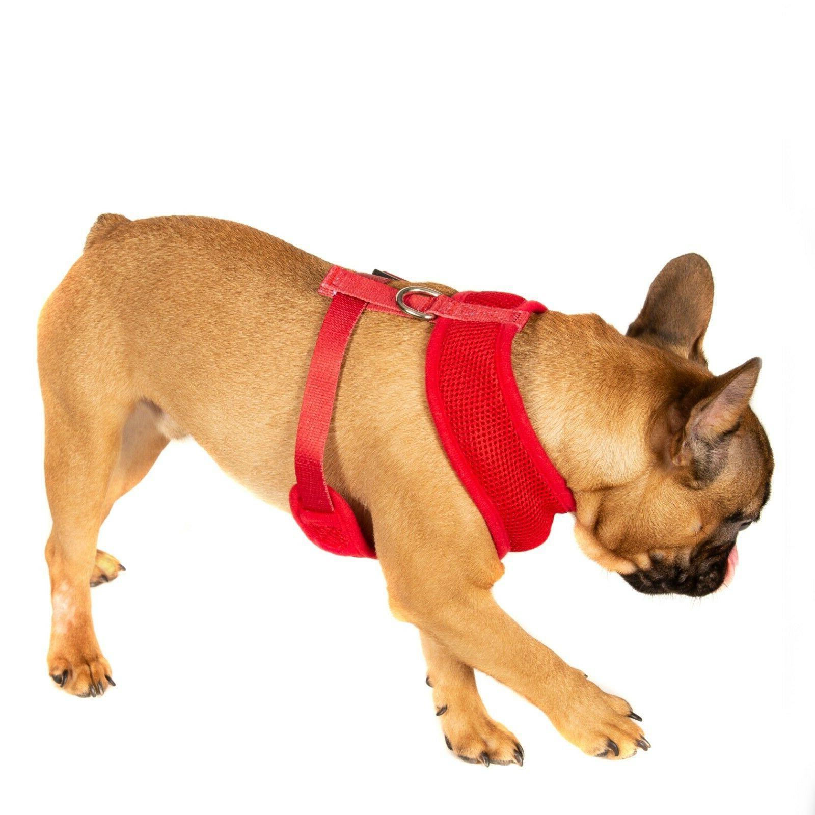 Pet Harness Dog DOUBLE Mesh Strap Vest