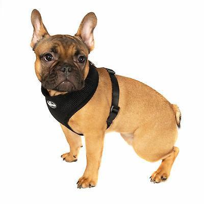 Pet Control Dog Mesh Strap