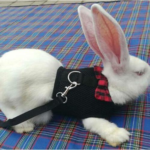 Pet Leash Vest Lead for Hamster Bunny CO