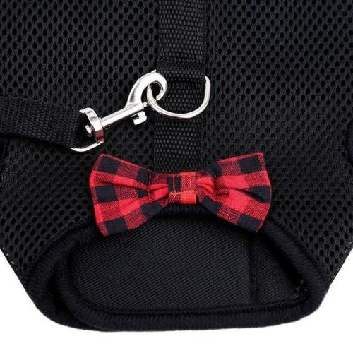 Pet Harness With Leash Lead Bunny CO