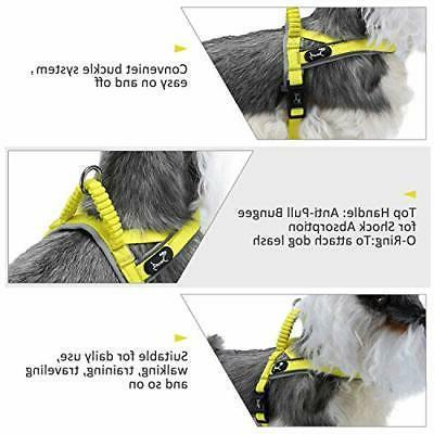 Pettom Dog Reflective Harness Dog