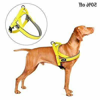 Pettom Reflective No Pull Harness for Adjustable
