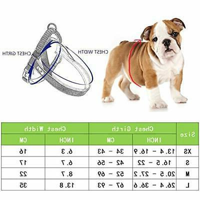 Pettom Dog Halter Reflective Pull Harness for