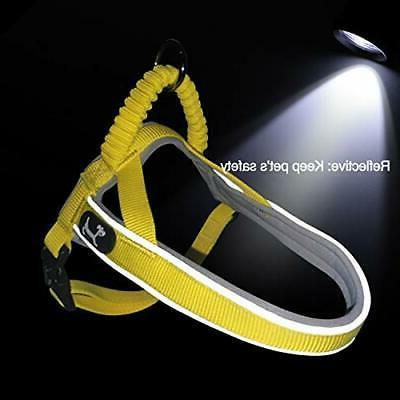 Pettom Reflective Pull Harness for
