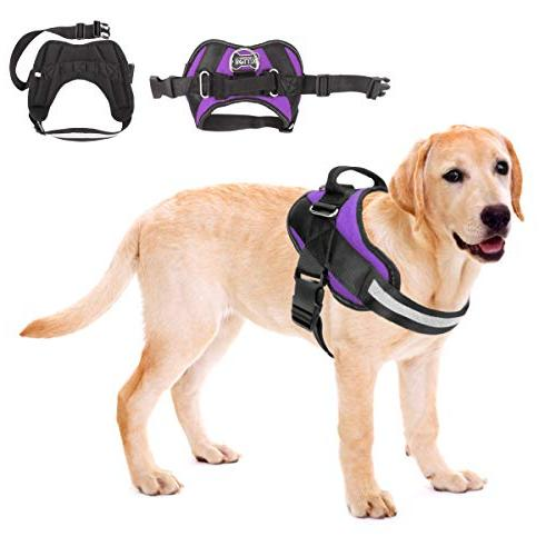 pull dog harness reflective breathable