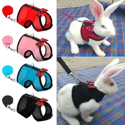 small animal harness leash hamster rabbit cat