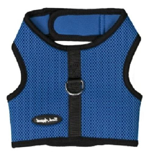 royal blue dog harness wrap n go