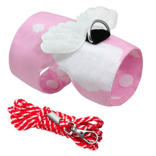 Pig Ferret Hamster Squirrel Harness and Leash Set