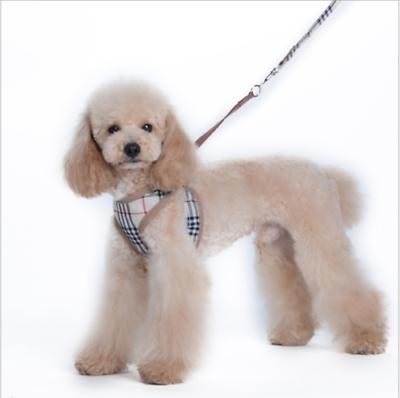 Soft Breathable Vest Leather Set Puppy Cat
